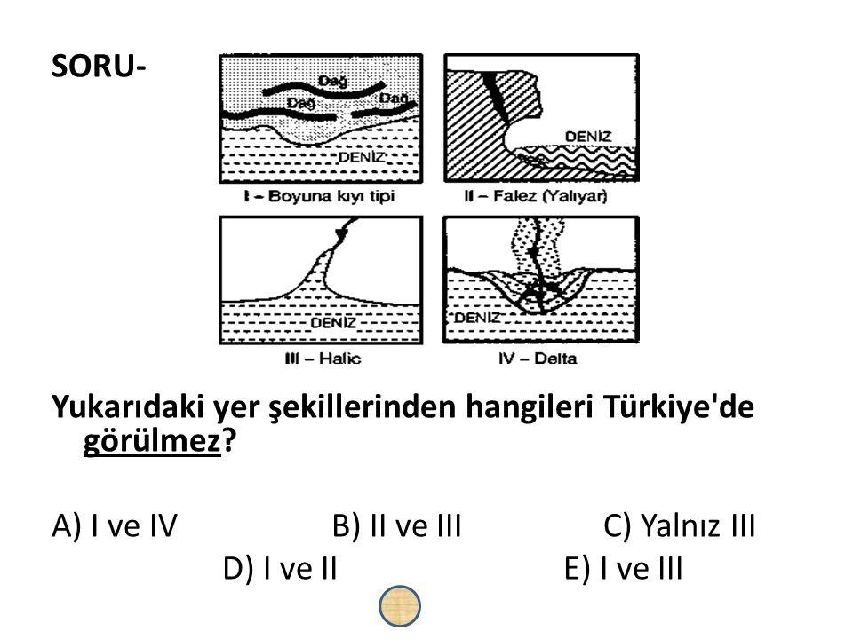SORU- Yukarıdaki yer şekillerinden hangileri Türkiye de görülmez A) I ve IV B) II ve III C) Yalnız III.