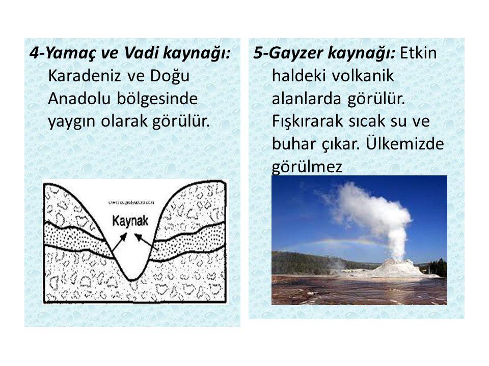 4-Yamaç ve Vadi kaynağı: Karadeniz ve Doğu Anadolu bölgesinde yaygın olarak görülür.