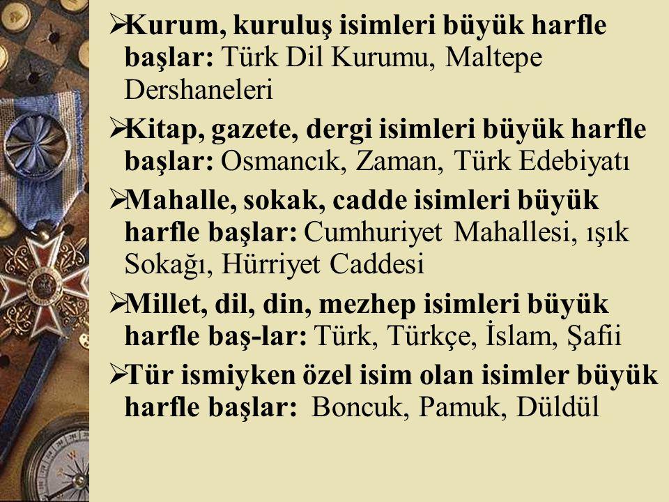 Kurum, kuruluş isimleri büyük harfle başlar: Türk Dil Kurumu, Maltepe Dershaneleri