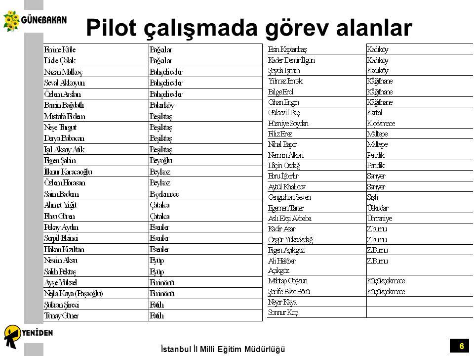 Pilot çalışmada görev alanlar