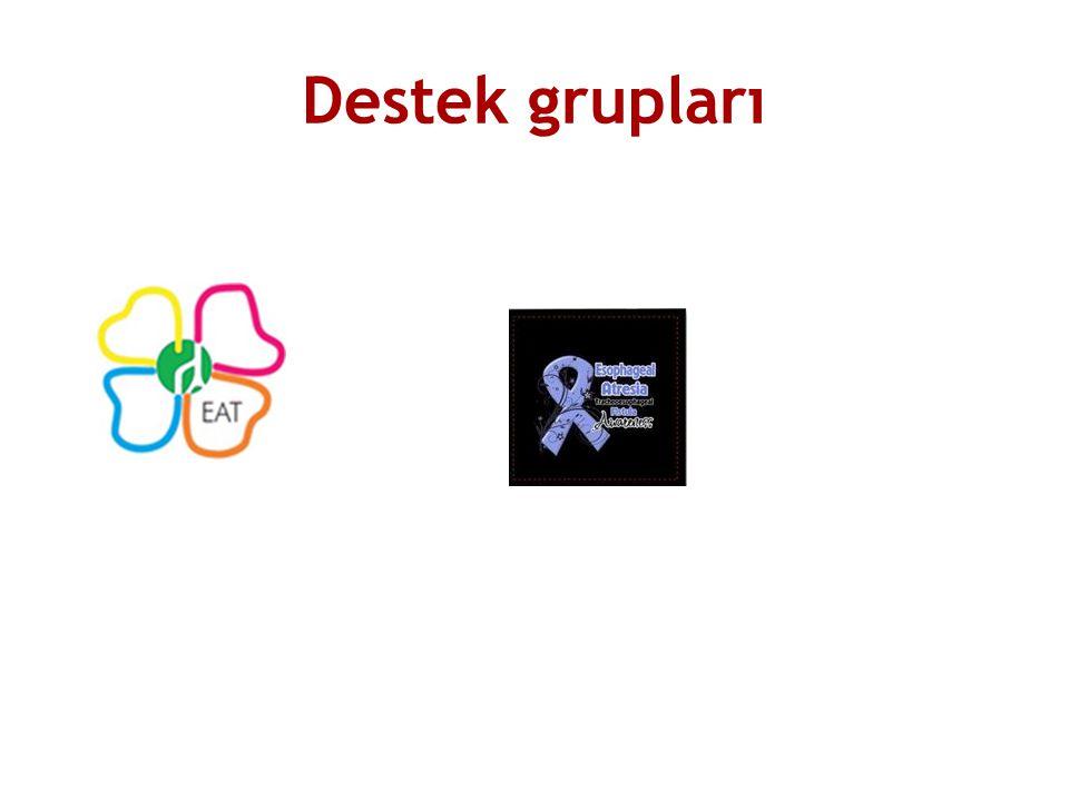 Destek grupları