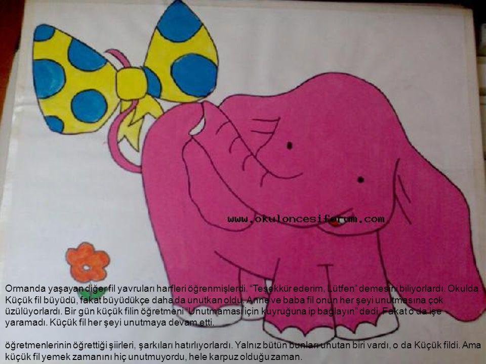 Ormanda yaşayan diğer fil yavruları harfleri öğrenmişlerdi