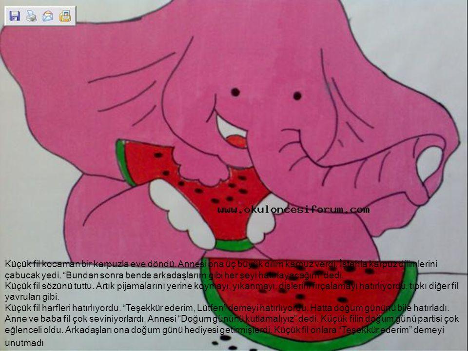 Küçük fil kocaman bir karpuzla eve döndü