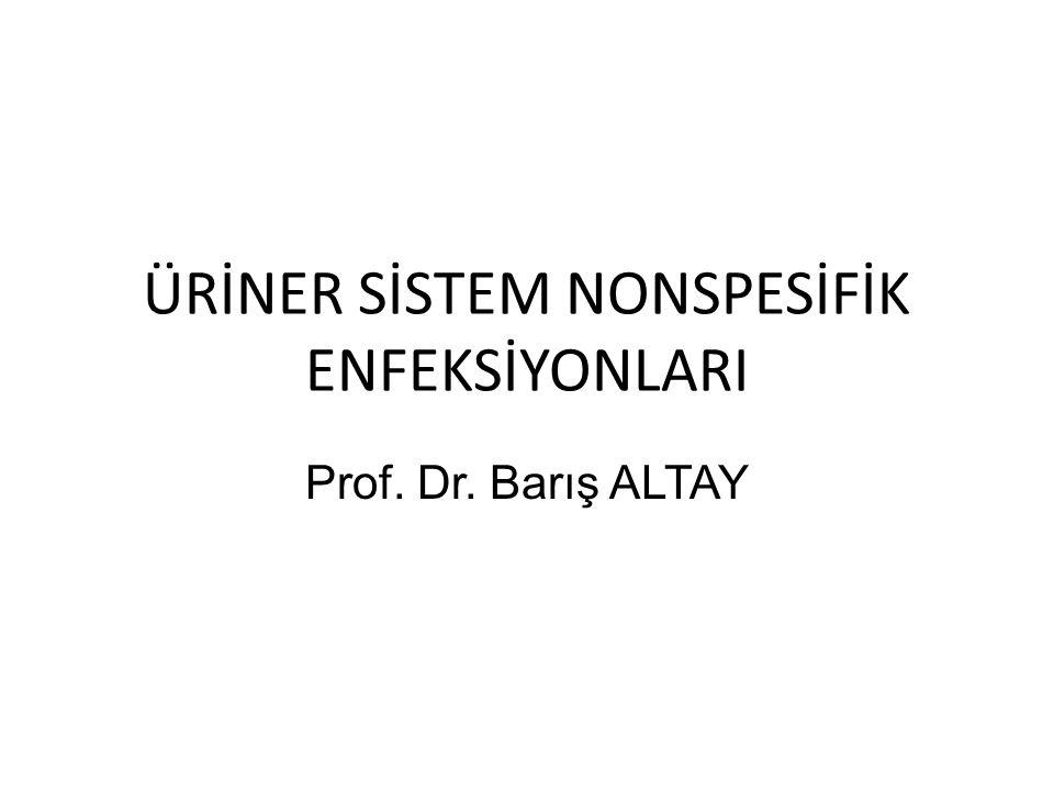 ÜRİNER SİSTEM NONSPESİFİK ENFEKSİYONLARI