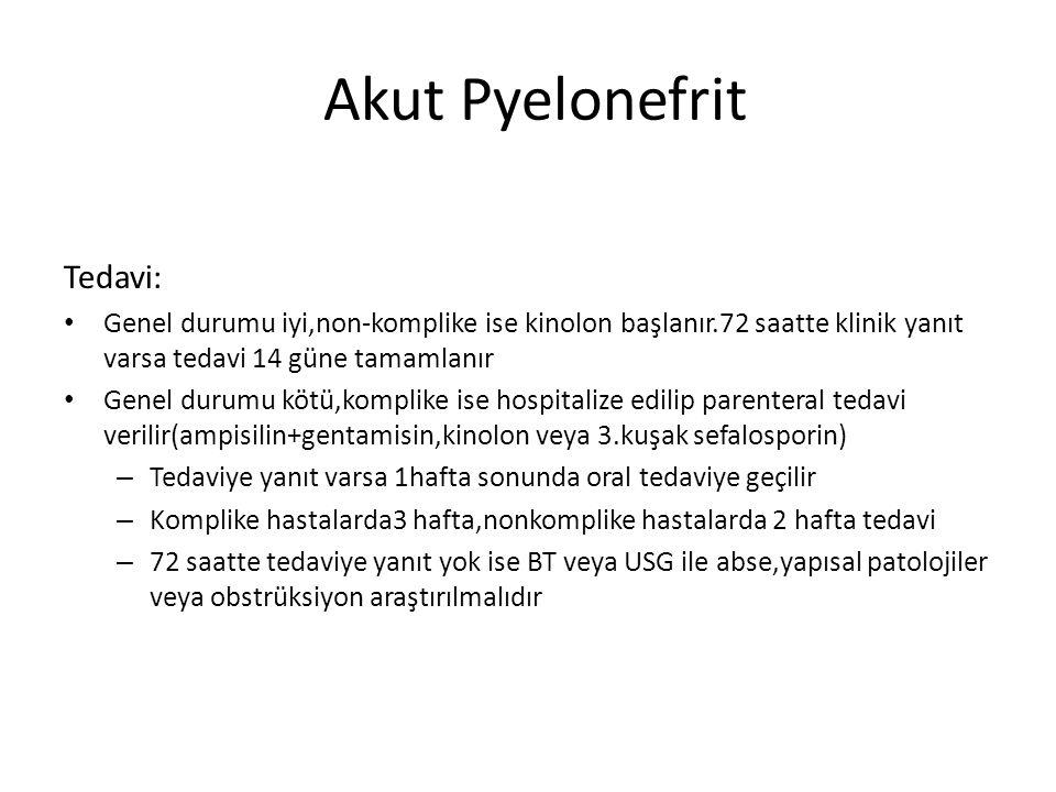 Akut Pyelonefrit Tedavi: