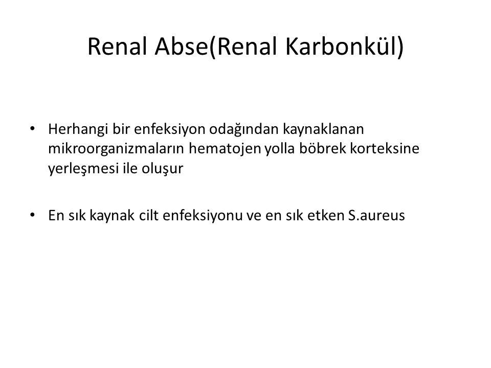 Renal Abse(Renal Karbonkül)