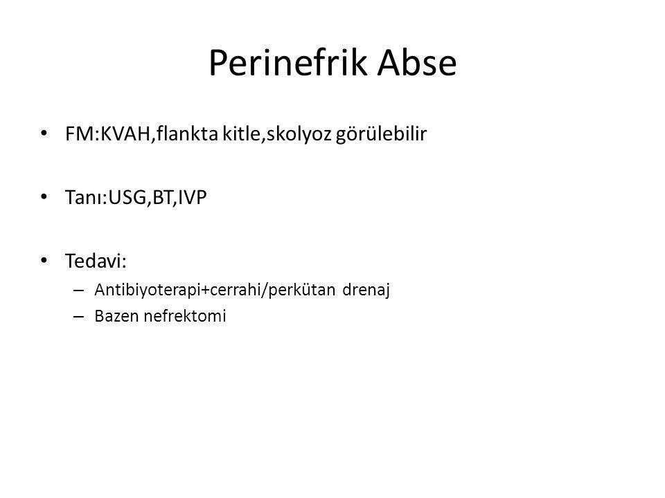 Perinefrik Abse FM:KVAH,flankta kitle,skolyoz görülebilir