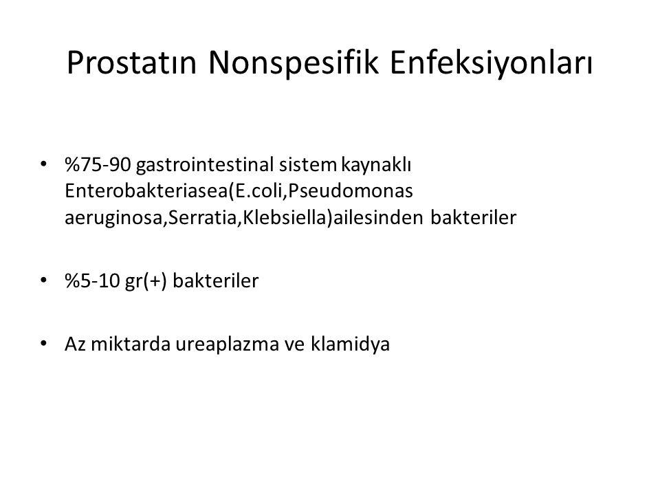 Prostatın Nonspesifik Enfeksiyonları