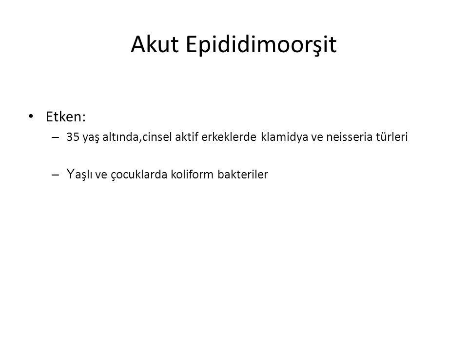 Akut Epididimoorşit Etken: