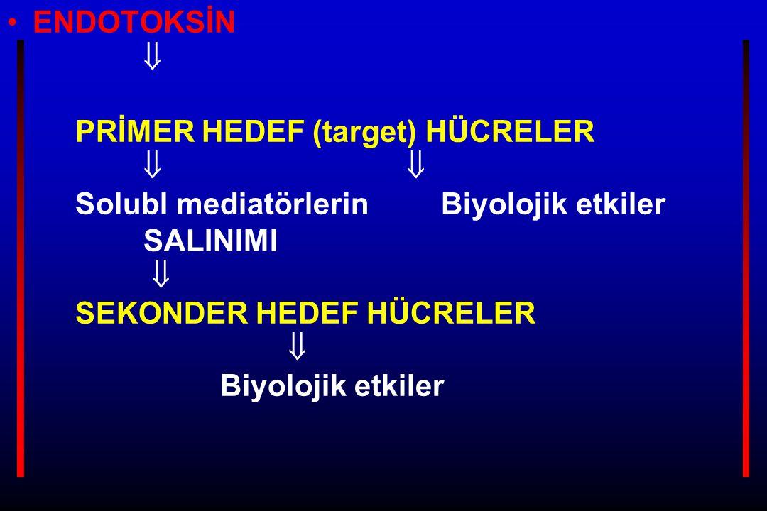 ENDOTOKSİN. . PRİMER HEDEF (target) HÜCRELER. . 