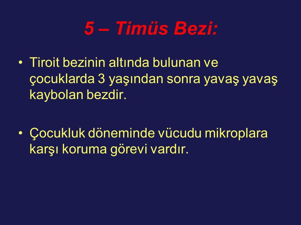 5 – Timüs Bezi: Tiroit bezinin altında bulunan ve çocuklarda 3 yaşından sonra yavaş yavaş kaybolan bezdir.
