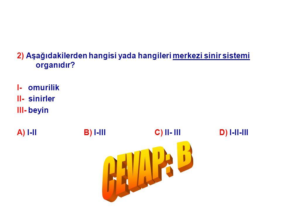 2) Aşağıdakilerden hangisi yada hangileri merkezi sinir sistemi organıdır