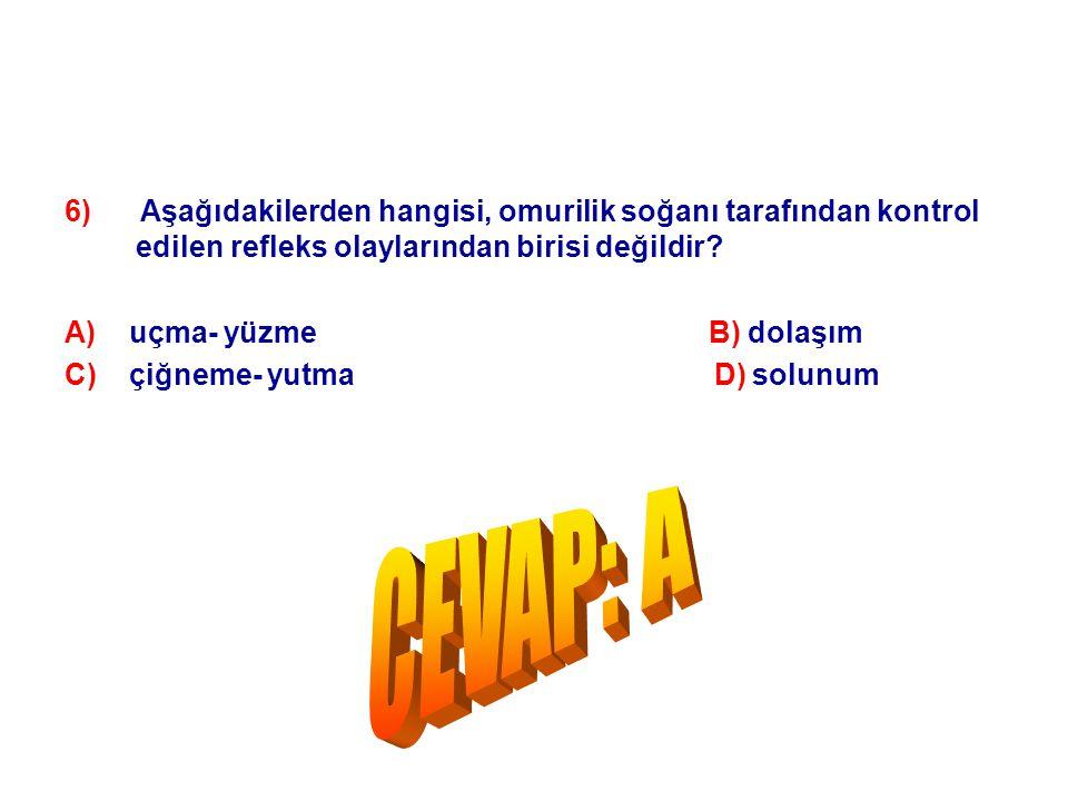 6) Aşağıdakilerden hangisi, omurilik soğanı tarafından kontrol edilen refleks olaylarından birisi değildir