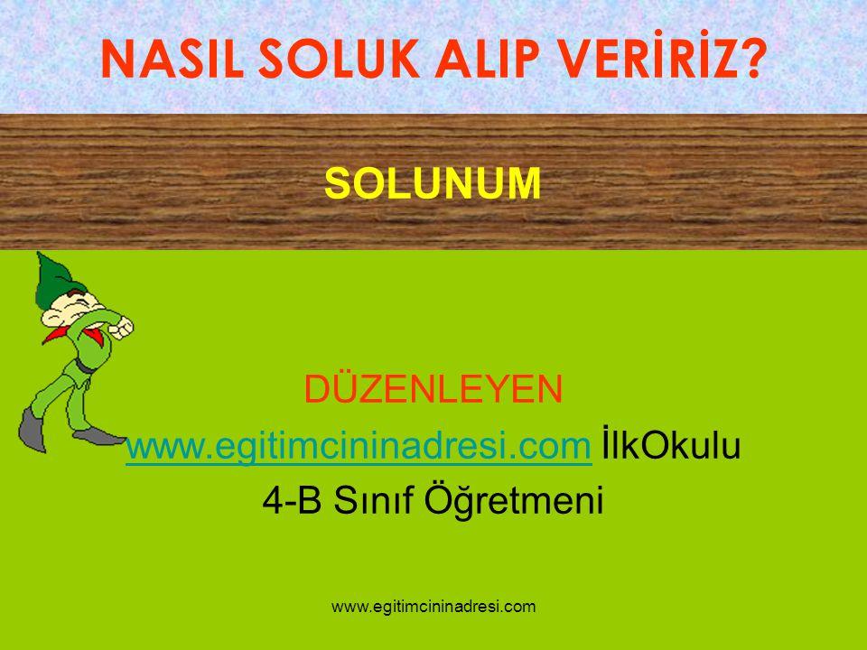 DÜZENLEYEN www.egitimcininadresi.com İlkOkulu 4-B Sınıf Öğretmeni