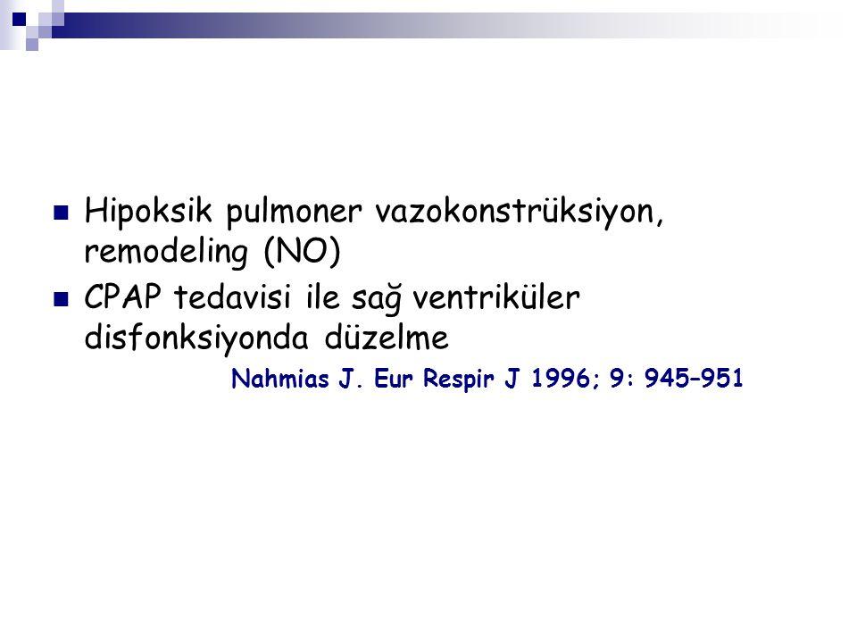 Hipoksik pulmoner vazokonstrüksiyon, remodeling (NO)