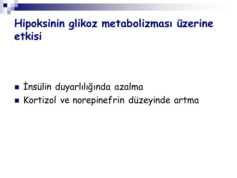 Hipoksinin glikoz metabolizması üzerine etkisi