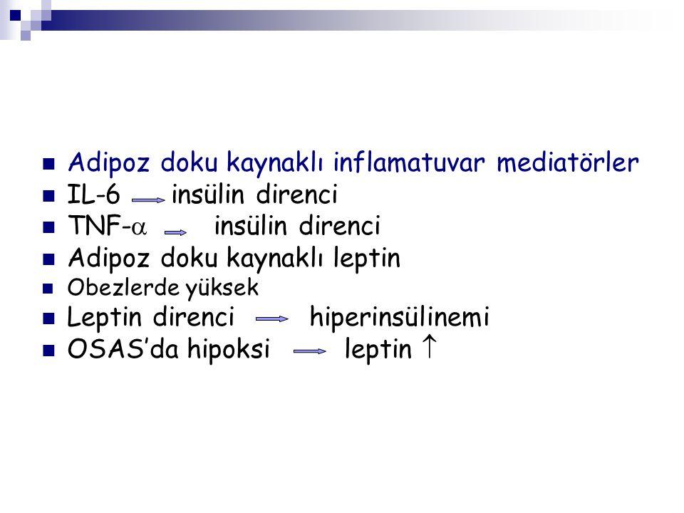 Adipoz doku kaynaklı inflamatuvar mediatörler IL-6 insülin direnci