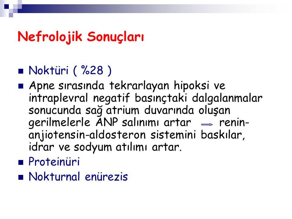 Nefrolojik Sonuçları Noktüri ( %28 )