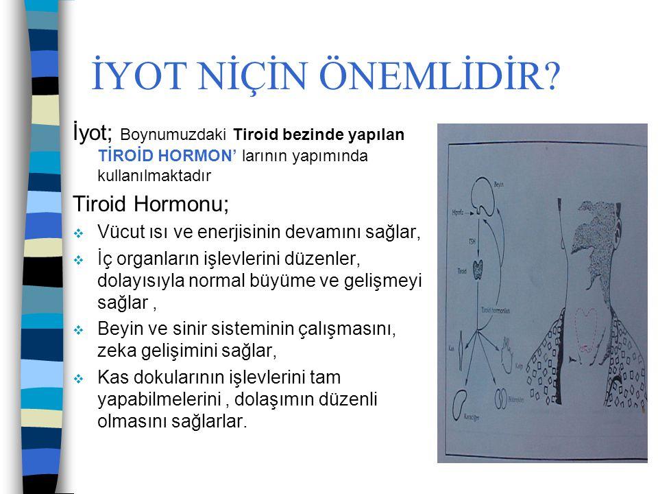 İYOT NİÇİN ÖNEMLİDİR İyot; Boynumuzdaki Tiroid bezinde yapılan TİROİD HORMON' larının yapımında kullanılmaktadır.
