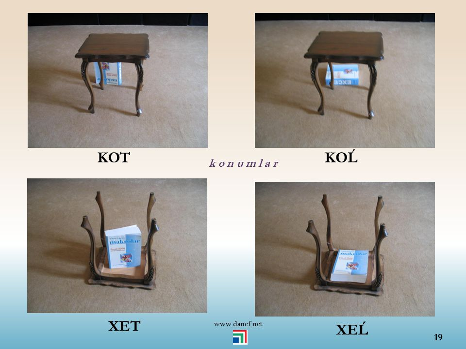 KOT KOĹ k o n u m l a r www.danef.net XET XEĹ