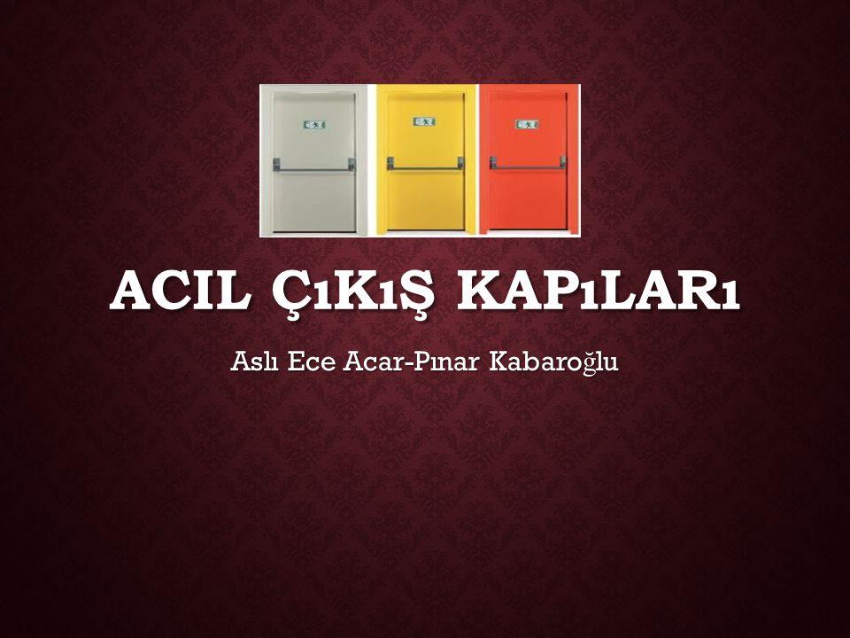 Aslı Ece Acar-Pınar Kabaroğlu
