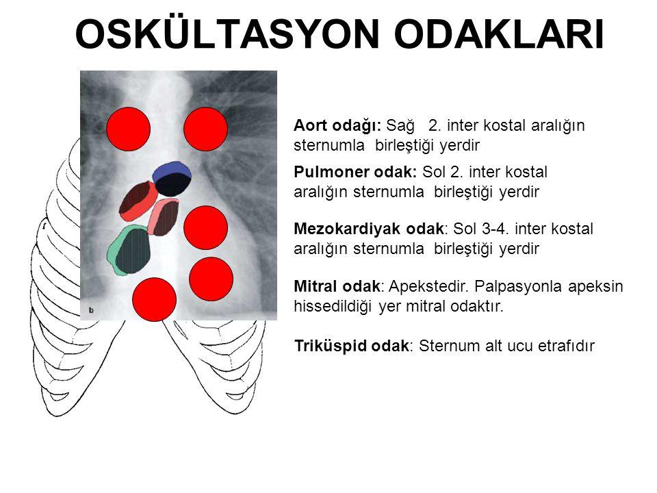 OSKÜLTASYON ODAKLARI Aort odağı: Sağ 2. inter kostal aralığın sternumla birleştiği yerdir.