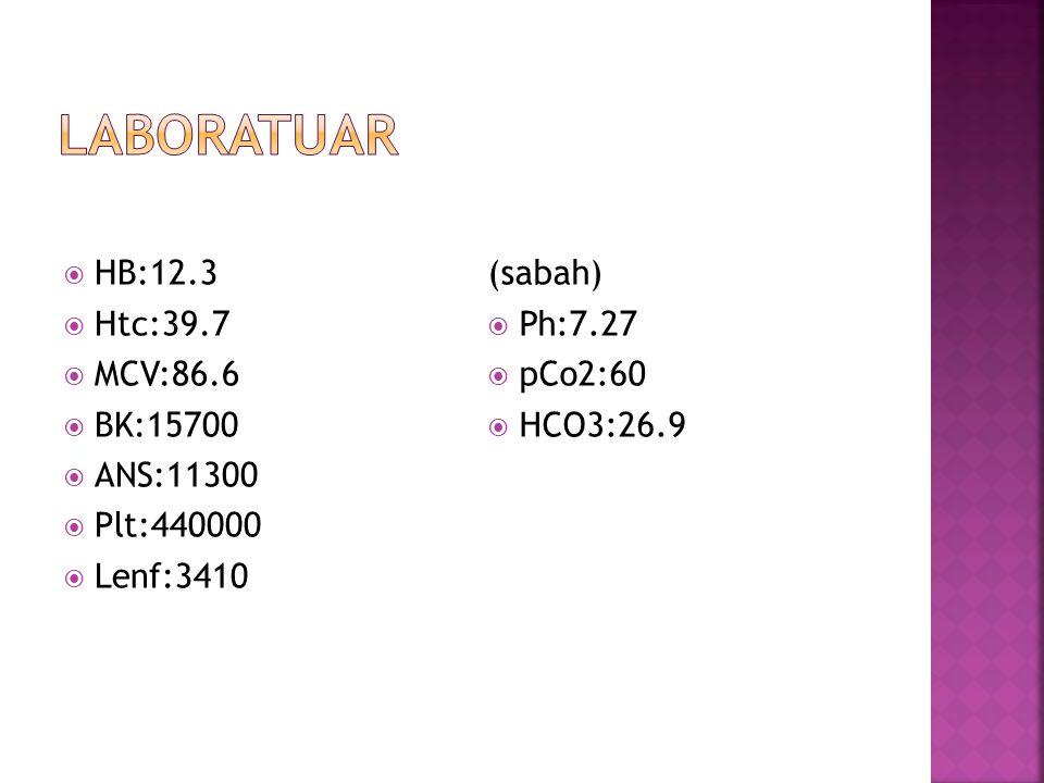 laboratuar HB:12.3 Htc:39.7 MCV:86.6 BK:15700 ANS:11300 Plt:440000