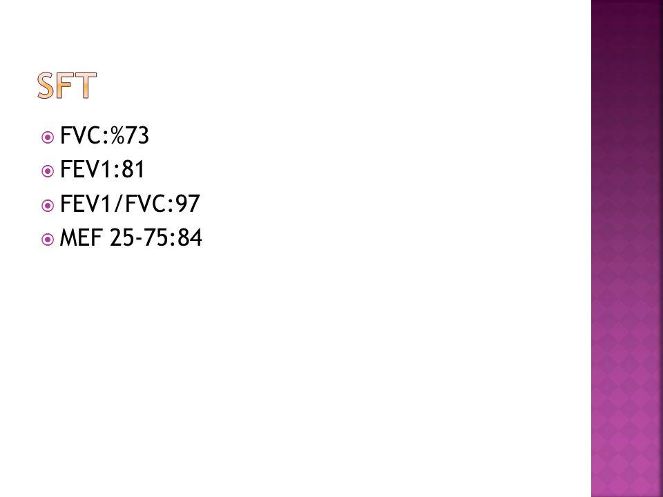 SFT FVC:%73 FEV1:81 FEV1/FVC:97 MEF 25-75:84