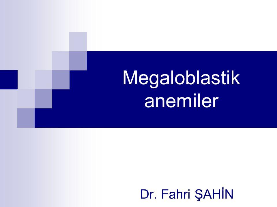 Megaloblastik anemiler
