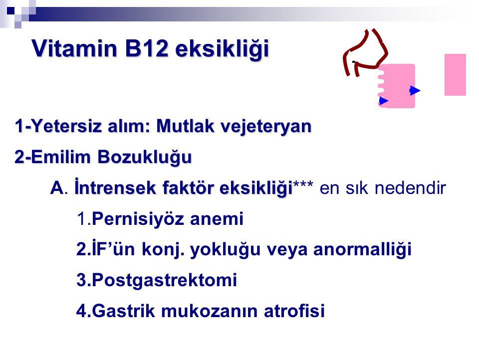 Vitamin B12 eksikliği 1-Yetersiz alım: Mutlak vejeteryan