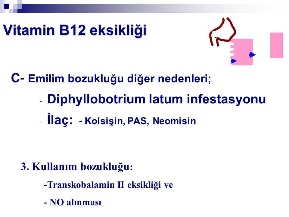 Vitamin B12 eksikliği C- Emilim bozukluğu diğer nedenleri;