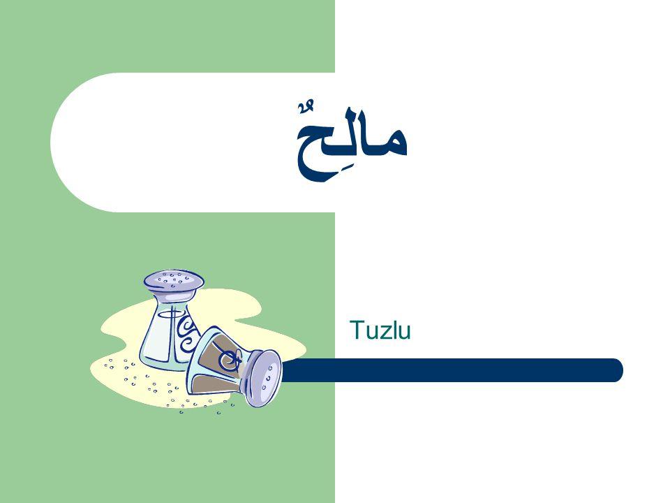 مالِحٌ Tuzlu