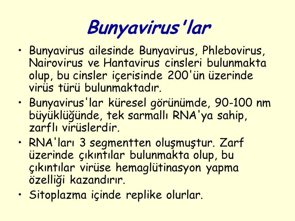 Bunyavirus lar