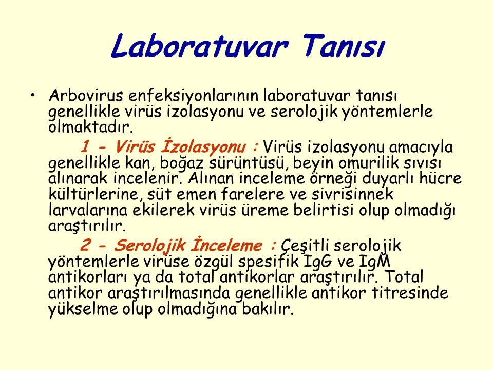 Laboratuvar Tanısı Arbovirus enfeksiyonlarının laboratuvar tanısı genellikle virüs izolasyonu ve serolojik yöntemlerle olmaktadır.