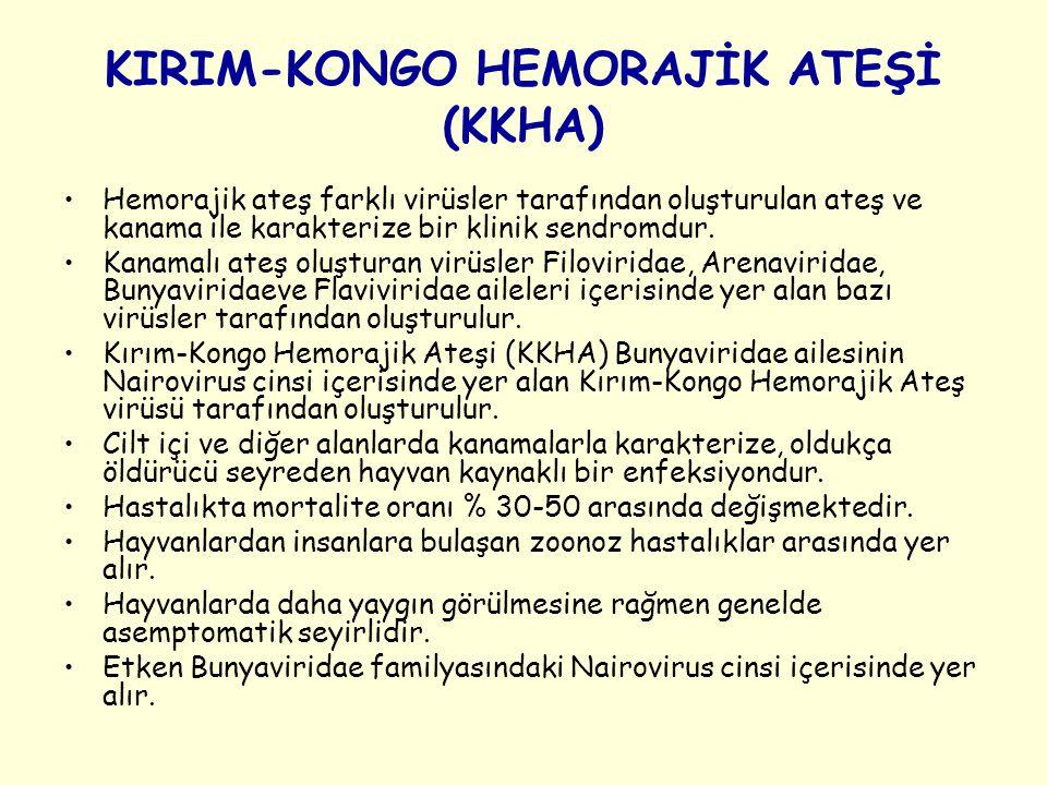 KIRIM-KONGO HEMORAJİK ATEŞİ (KKHA)