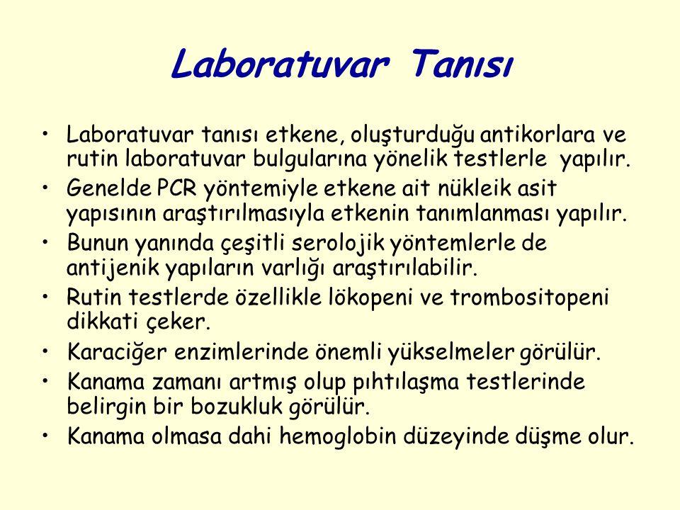 Laboratuvar Tanısı Laboratuvar tanısı etkene, oluşturduğu antikorlara ve rutin laboratuvar bulgularına yönelik testlerle yapılır.