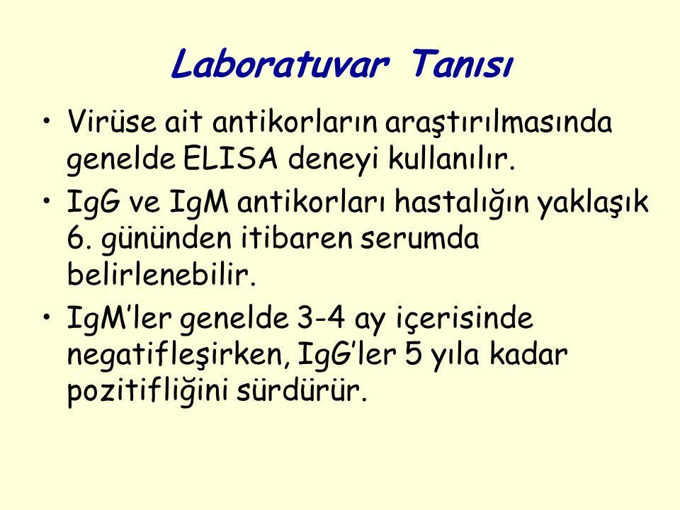 Laboratuvar Tanısı Virüse ait antikorların araştırılmasında genelde ELISA deneyi kullanılır.