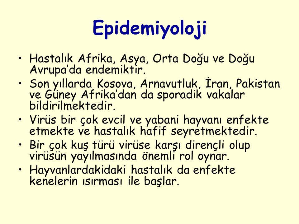 Epidemiyoloji Hastalık Afrika, Asya, Orta Doğu ve Doğu Avrupa'da endemiktir.