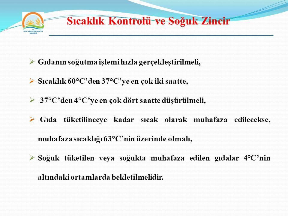 Sıcaklık Kontrolü ve Soğuk Zincir