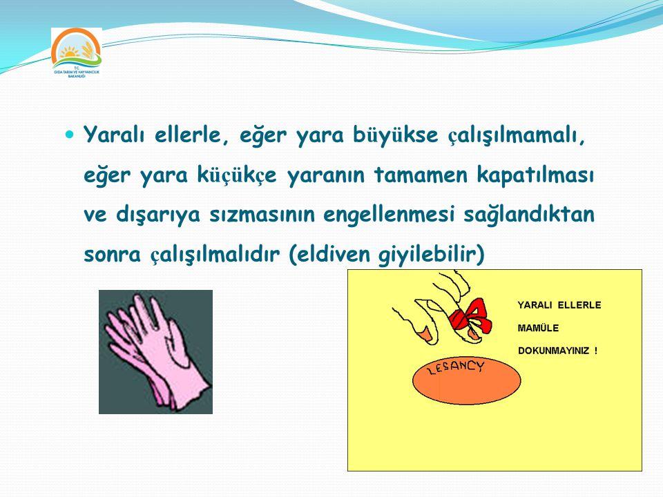 Yaralı ellerle, eğer yara büyükse çalışılmamalı, eğer yara küçükçe yaranın tamamen kapatılması ve dışarıya sızmasının engellenmesi sağlandıktan sonra çalışılmalıdır (eldiven giyilebilir)