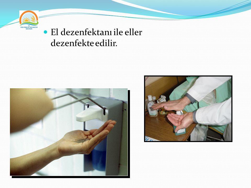 El dezenfektanı ile eller dezenfekte edilir.