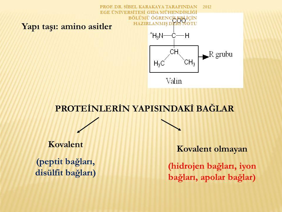 Yapı taşı: amino asitler