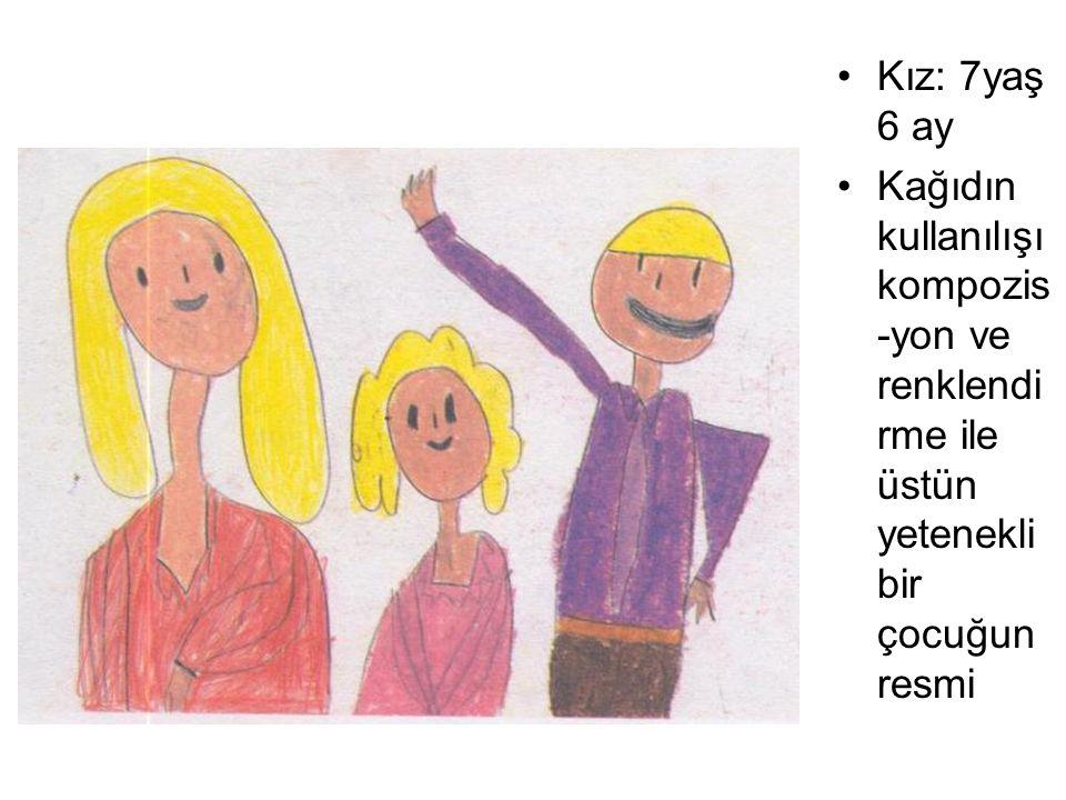 Kız: 7yaş 6 ay Kağıdın kullanılışıkompozis-yon ve renklendirme ile üstün yetenekli bir çocuğun resmi.