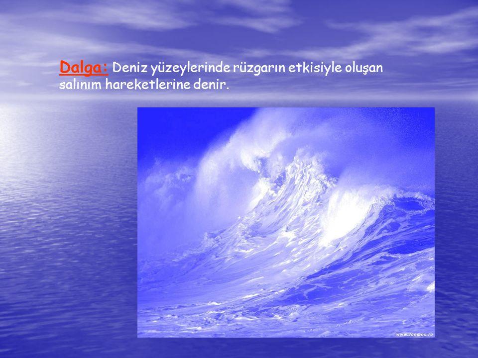 Dalga: Deniz yüzeylerinde rüzgarın etkisiyle oluşan
