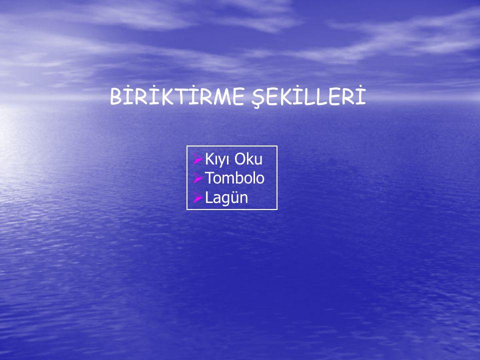 BİRİKTİRME ŞEKİLLERİ Kıyı Oku Tombolo Lagün