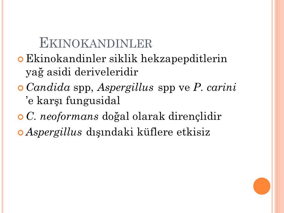 Ekinokandinler Ekinokandinler siklik hekzapepditlerin yağ asidi deriveleridir. Candida spp, Aspergillus spp ve P. carini 'e karşı fungusidal.