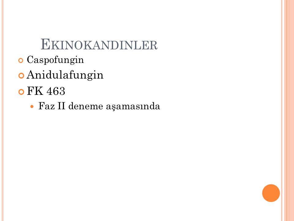 Ekinokandinler Anidulafungin FK 463 Caspofungin