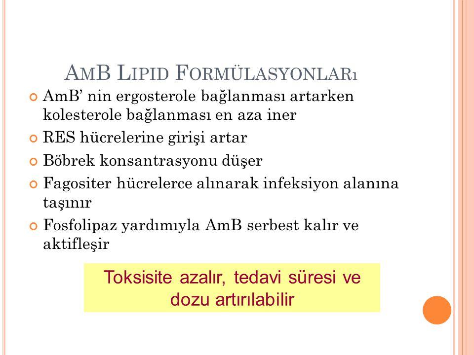 AmB Lipid Formülasyonları