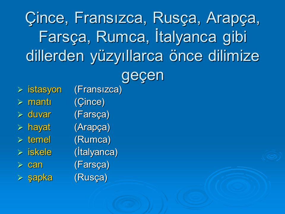 Çince, Fransızca, Rusça, Arapça, Farsça, Rumca, İtalyanca gibi dillerden yüzyıllarca önce dilimize geçen