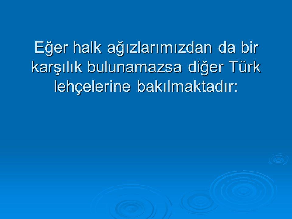 Eğer halk ağızlarımızdan da bir karşılık bulunamazsa diğer Türk lehçelerine bakılmaktadır: